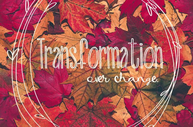 Transformation Over Change
